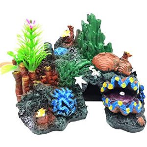 Aquascaping & Decor